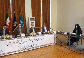 امیری: سیاست دولت تعامل حداکثری با مجلس است
