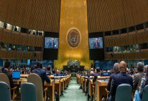 مجمع عمومی سازمان ملل متحد؛ عرصه تفاوت و تشابه